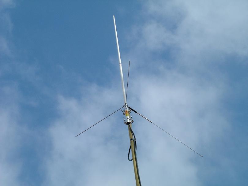 Diamond antennas picture pictures